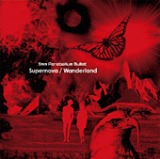 Supernova/Wanderland オープニングテーマ 「Wanderland」収録
